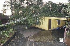 Träd lade sig över stugor där tromben svepte fram i skärgården.