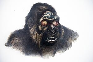 Torbjörn Bergs konst verkar på flera plan. Men bakom allt finns ändå rätt så tydliga tankar om vad vi på den här planeten gör mot varandra, mot djuren och naturen.