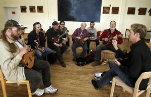 Bluegrass. På festivalen i Torsåker bjöds det på bland annat mycket countrymusik.  samlade. Countryfolket samlades i Torsåker för att njuta av festivalstämningen.