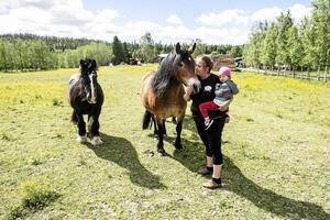 Med Tinkerhästen Blacken och bruksnordisen Jenny, dottern Astrid är också med i hästhagen.