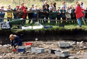 Arkeologi som folknöje: utgrävningar på Birka.