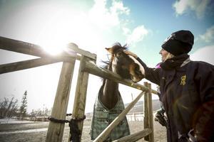 Jalle är ridskolans största ponny. Eftersom stallet är så litet kan man inte ha några stora hästar vilket gör det svårt för de äldre barnen att fortsätta med ridsporten. Här ser vi Linda Eriksson som är ridlärare.