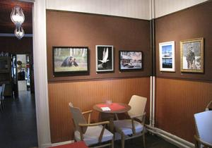 Sedan 1981 har Galleri Mazarin haft månatliga utställningar på Rådhuskonditoriet i Söderhamn. Nu är framtiden oviss för konditoriet och därmed galleriet.