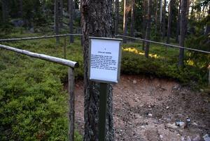 En av informationsplatserna efter stigen. Här har det grävts en större grop och här finns information om svallad morän, det som syns i gropen. Foto:Roland Berg