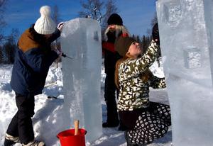 Vinterträdgård i två avdelningar är tanken. Yumi Sano, Malin Andersson och Pernilla Staaf, elever på Hällefors Folkhögskola, jobbar med portalen.