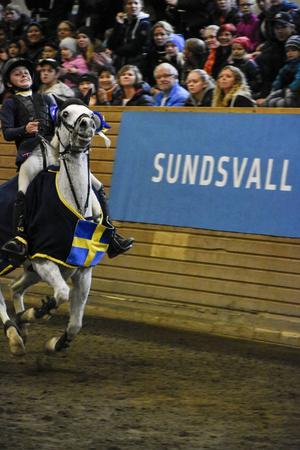 Hanny Lundgren och Flying Dragon vann SM-guld i B-klassen.
