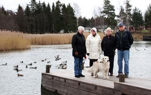 Positiva. Eva Danielsson, Marianne Holmström, Birgitta Ekdahl och Sven-Erik Ekdahl ser positivt på kommunens nya                                    VA-förslag. De hoppas att en utbyggnad kan leda till att miljön och vattenkvaliteten förbättras.