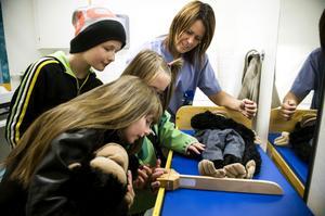 Emma Kanon, My Fors och Filip Kanon får sina djur undersökta av barnsjuksköterskan Susanne Andersson.