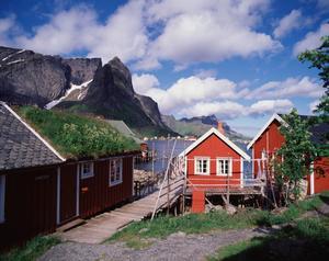 Lofoten har ett natursceneri i världsklass.