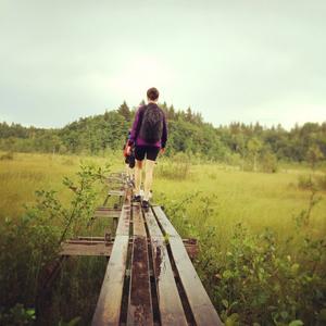6. En bild från sommarens vandring runt Gruvdammsleden, här vid Ekeby mosse.