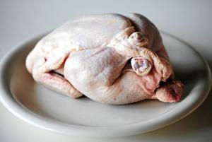 Inga retoriska knep om fin- och fulkyckling kan dölja det faktum att svensk kycklingindustri är långt ifrån hållbar, skriver Anna Harenius.