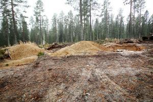 Flera gropar har grävts i ett område söder om Gnarp.