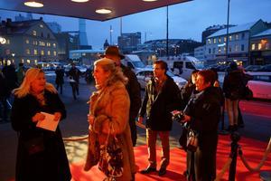 Den 36:e upplagan av Göteborgs filmfestival kommer att visa 500 filmer från 84 länder.