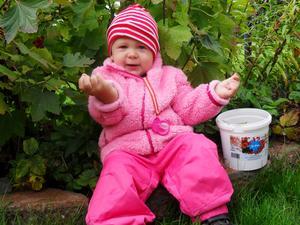 Här är Julia Boström 16 månader som sitter på sitt favoritställe i trädgården och äter de röda vinbären.-Vill du smaka