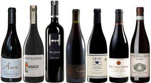 Några av de mest köpvärda röda vinerna bland ett stort antal testade i beställningssortimentet.
