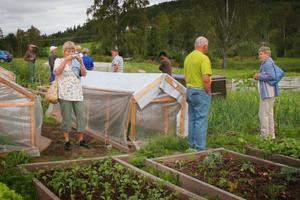 Nordanstigs naturskyddsförening besökte koloniträdgård i Bergsjö.