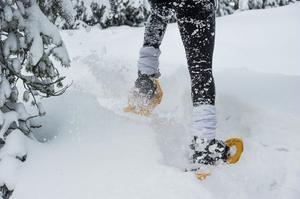 Förutom snöskorna är ett par kängor det enda som behövs.