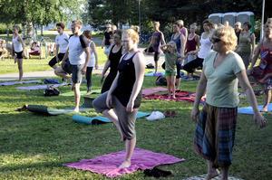 Många söker sig till yogaskolan för att lära sig ett sätt att röra på sig, som man samtidigt trivs med.