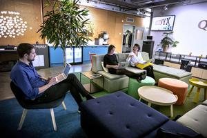 I entrén sitter några av företagets anställda och arbetar vid varsin dator.