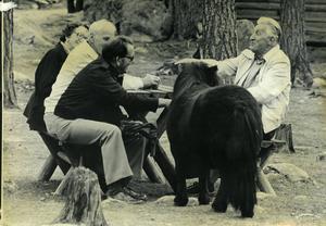 Djuren var ofta närgångna och ville delta i människornas aktiviteter. Här i ett skogsmöte.