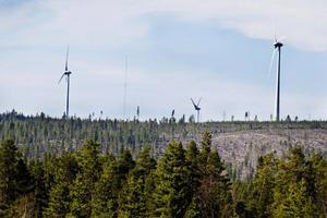 Varför skall svenska folket genom elcertifikaten tvingas vara med och betala för stor export av vindkraft till Danmark och Tyskland, undrar debattören Sivert Göthlin.    Foto: Ulrika Andersson