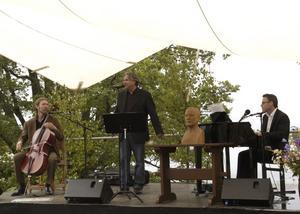 Entertainer. Mikael Samuelsson förstärker sångernas innehåll med gester och minspel. Foto:KarinJanson