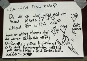 Eleverna har skrivit hälsningar till Zeb.