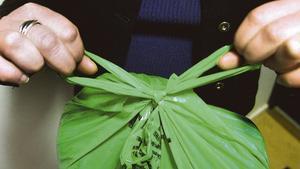 Gröna påsen för komposterbart hushållsavfall är på väg att fasas ut
