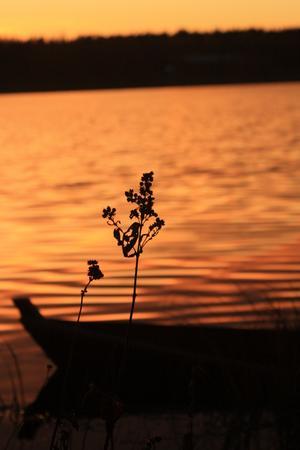 Solnedgång över Sura.
