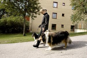 Britt Johnsdotter känner fortfarande smärta i sitt knä när hon går ut med hundarna.