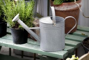 Den söta vattenkannan i zink (198 kronor) från Bleke blommor passar till de mindre planteringarna.