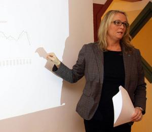 – Länets småföretagare har sedan i våras gått från att vara mest optimistiska i landet till att tillsammans med Värmland vara mest pessimistiska, säger Anette Tandberg, Företagarnas nya regionchef i Jämtland-Härjedalen.
