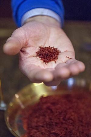 Saffran är lätt att förfalska av till exempel gurkmeja eller safflor, men om man har koll är det ganska enkelt att känns skillnad på doft och smak från äkta vara. Foto: Leif R Jansson/TT