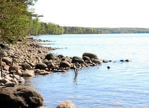 Alla vill ju bo lugnt och fint vid en liten sjö. Strandskyddet gläder ingen, skriver skribenten.