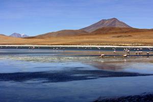 Bolivia - vackert men inte särskilt gästvänligt, enligt en ny undersökning.