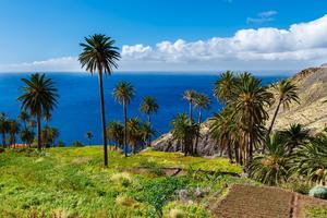 Kanarieöarna är både en påsk- och en sommarfavorit.