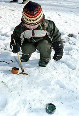 Foto:LEIFJÄDERBERG Måla ute. Louise Lomfalk, 2,5 år prövar vattenfärgen på snön.