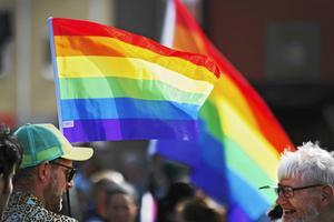 Utskottet menar att Svenska kyrkans engagemang och delaktighet i Pridefestivaler är bra och viktigt, skriver insändaren.
