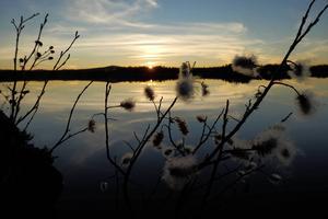 Solnedgång vid Byaforsen.