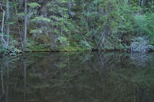 Vid Styggforsen finns också en trolsk damm.