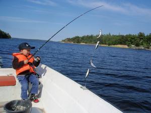 Hampus älskar att fiska strömming.