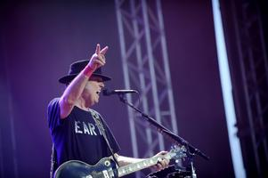 Neil Youngs