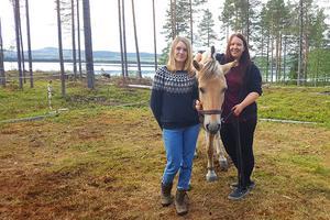 Johanna Svensson, hästen Sofus och hans ägare Malin Holmin återförenade efter nattens bravader.