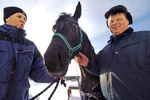 Miss Tracy är på väg toppen i trav. Det är roligt tycker Anders Bohlin och Thomas Lönnström