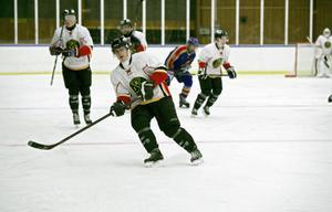 Vitklädda BIS var nära – men det blev uinga poäng i hemmapremiären mot Skutskär.