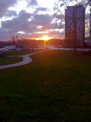 Jag var ute och gick min morgonpromenad den 2 advent 08.45 och då var solen på väg upp!