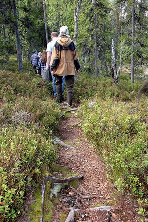 Längs stigen i parken blev det många stopp där det fanns mycket att tala om. Här har gruppen precis passerat Svansjön.