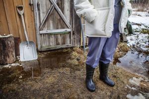 Tomten svämmar över och Syster Söderberg är förtvivlad. Problemen har funnits sedan stormen tog skogen och kommunen avverkade på marken intill villatomten.