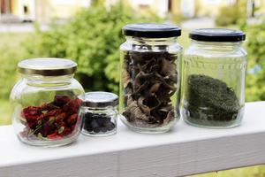 Chili, enbär, trattkantareller och smulade nässlor går att torka för lång hållbarhet.