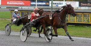 Janne Norberg vann med Qalibra Frontline som betalade över 31 gånger pengarna.